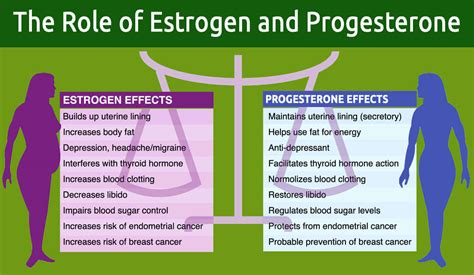 healthy fats to increase estrogen foods to increase progesterone food