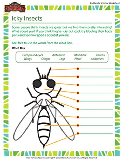 Worksheets For 2nd Grade Science by Icky Insects 2nd Grade Science School Of Dragons