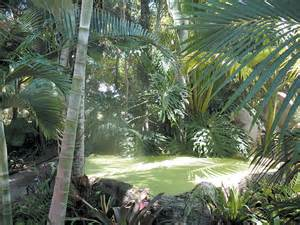 Backyard Conservation Pacific Horticulture Society A Tropical Eden With A Mission