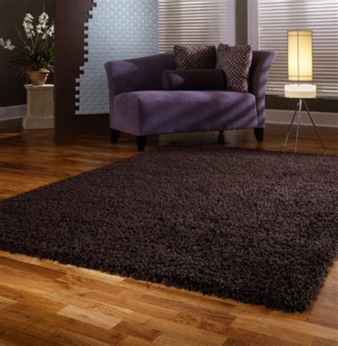 Best Living Room Area Rugs Best 10 Adorable Shag Area Rugs For Chic Living Room