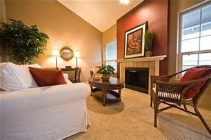 accent wall colours 2016 20 beautiful living room accent wall ideas