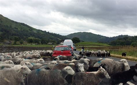 there was a bit of a traffic jam on the way to work this