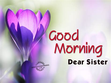 imagenes de good morning sister good morning wishes for sister good morning pictures