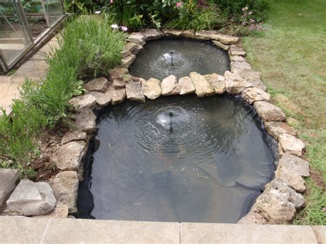backyard trout pond 2015 home design ideas