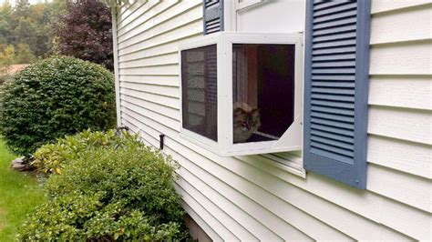 Cat Window Patio by Catio By Tiger Wire Tiger Wire Screens