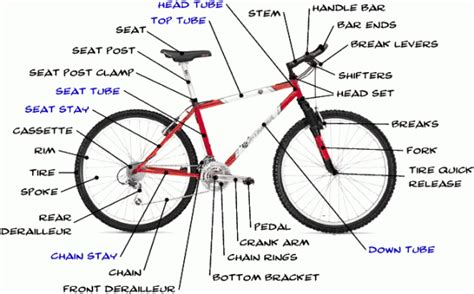 the anatomy of a mountain bike cool biking zone diy learning kirksville bike co op