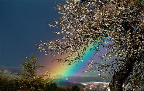 Ada Pelangi Di Langit Turki foto gratis alam pemandangan latar belakang gambar