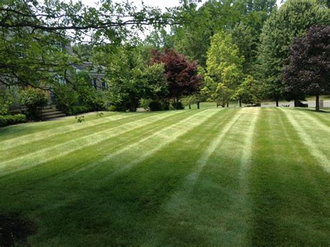 lawn care lawn mowing roosevelt millstone nj
