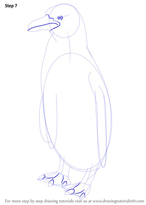 humboldt penguin coloring page related keywords suggestions for humboldt penguin drawing