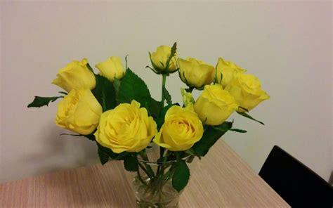 fiori tutto l anno tutto l anno amici in fiore
