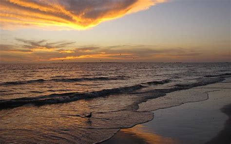 fort myers beach vacations | your vacation starts here