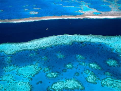 the the great barrier reef of australia its products and potentialities containing an account with copious coloured and photographic illustrations and coral reefs pearl and pearl shell bãªch books dredging the great barrier reef abyss