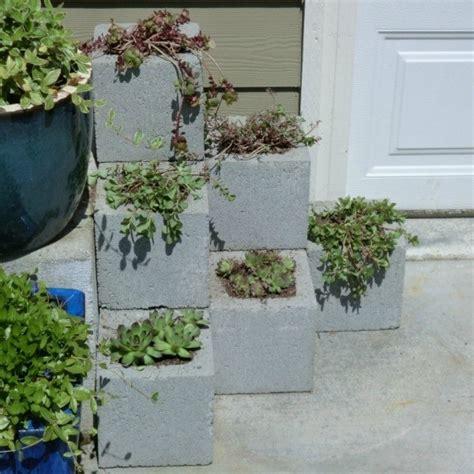Cement Block Planters by A Cinder Block Planter Thriftyfun