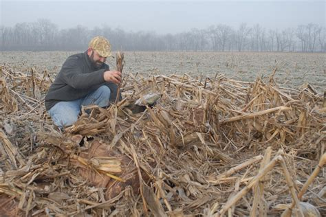 layout hunting 5 best ways to conceal your layout blind wildfowl
