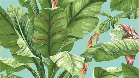 banana leaf hd wallpaper ashford tropics 27 x 27 quot banana leaf wallpapers desktop