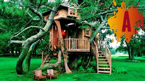 coolest treehouse in the world coolest tree houses in the world my web value