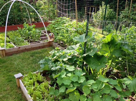 vegetable garden pasta princess and more