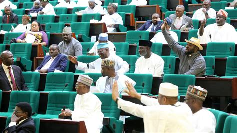 members of house of representatives representatives pass vgn bill nigeria the guardian nigeria newspaper