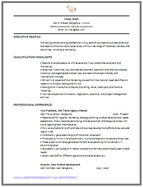 professional cv for marketing manager writing and