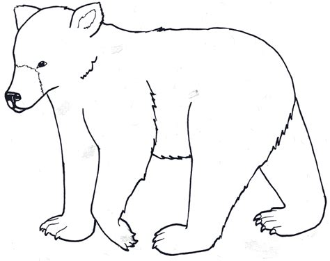 outline bear cliparts