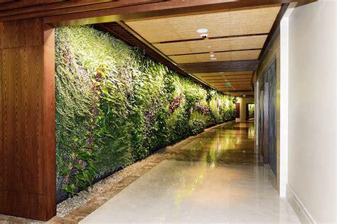 imagenes de jardines interiores modernos jardines interiores est 233 tica vegetal detailers