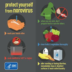 how many days it takes to recover from c section making a norovirus vaccine a reality blogs cdc