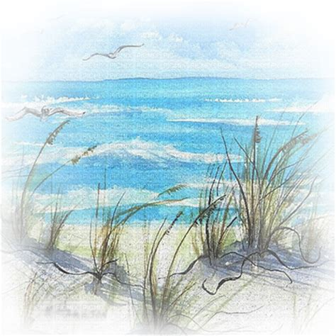 beach transparent soave background transparent summer beach sea grass blue