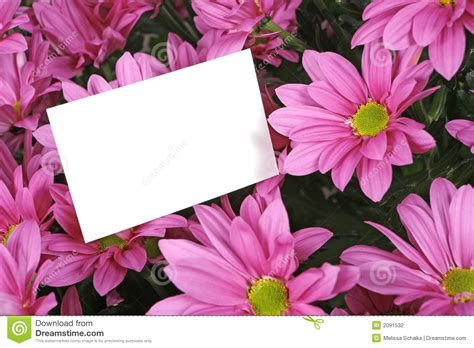 Flowers With Gift Card - gift card and flowers stock photography image 2091532