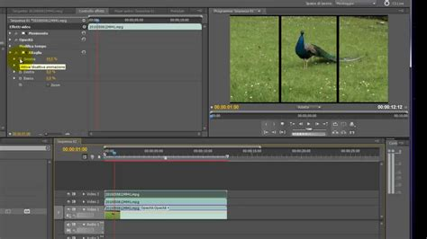 adobe premiere pro non subscription tutorial adobe premiere cs5 finestre in movimento cookie
