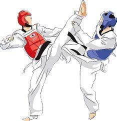 sketchbook nedir diferencia entre taekwondo y karate