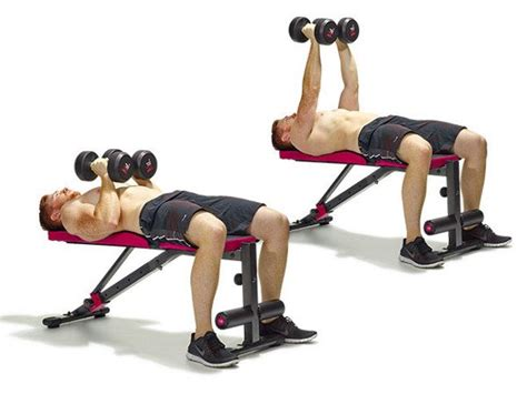 bench press with bar or dumbbells complete dumbbells only home workout for bigger and
