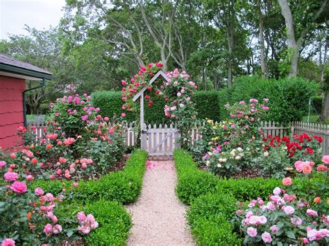 ideas for a cottage garden 30 cottage garden ideas with different design elements