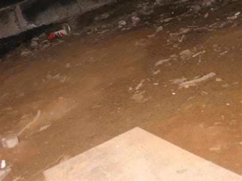 d dirt floor crawl space
