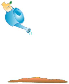 watering cans animated gifs ~ gifmania