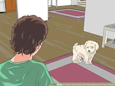 how to house train your dog in 7 days how to train your dog from running out of your house 14 steps