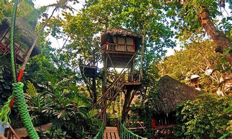 dominican tree house village dominican tree house eco village in samana groupon getaways