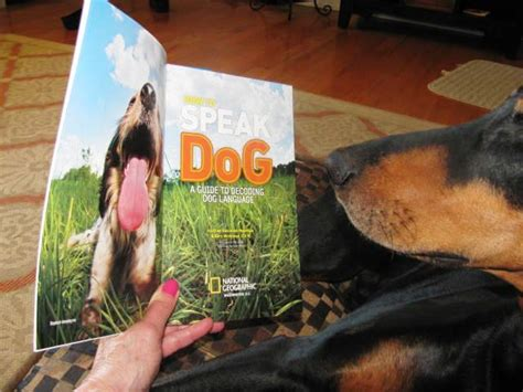 Book Review Time For Behavior By Diane Rich by Book Review How To Speak A Guide To Decoding