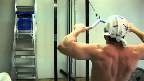 shoulder trap mass building workout