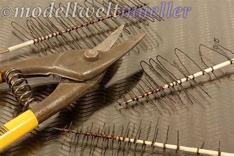 Tannen Selber Ziehen by Modellwelt M 252 Ller Wurzel Stamm Und Krone Nadelbaumbau