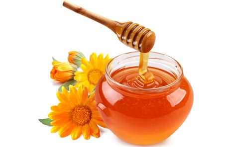 house of honey the amazing benefits of honey