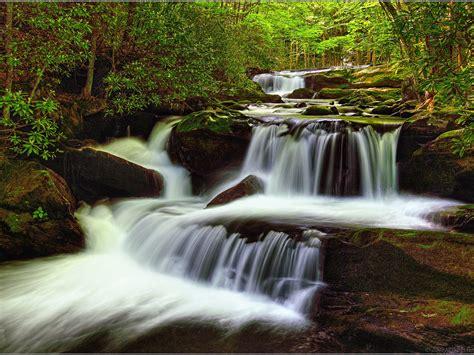 cascadas con 225 rboles imagui imagenes de cascadas y rios fondos de pantalla naturaleza