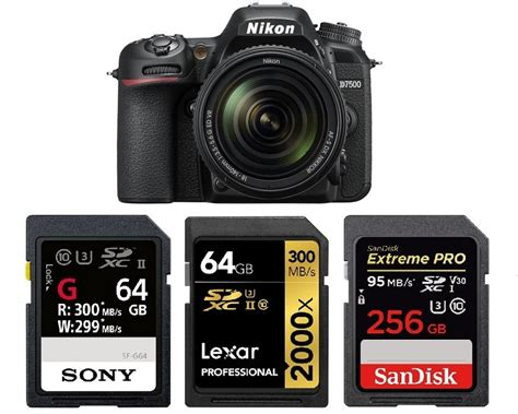 nikon memory card best memory cards for nikon d7500 times