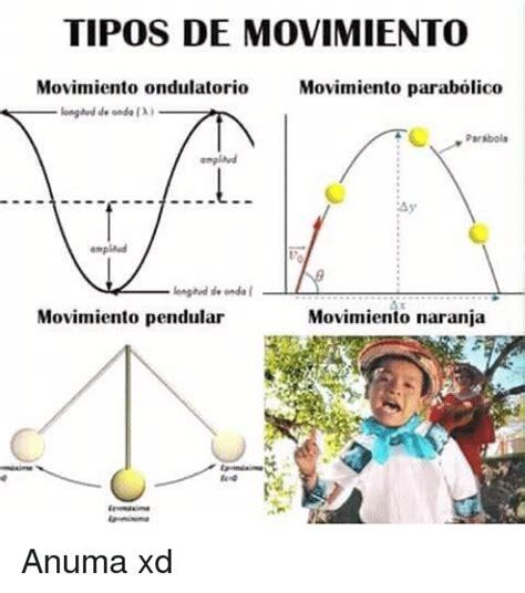imagenes del movimiento ondulatorio tipos de movimiento movimiento ondulatorio movimiento