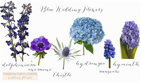 Blue Flowers For Wedding by Blue Wedding Flowers For Flowers