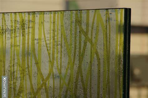 Bambus Garten Stuttgart bambus garten stuttgart