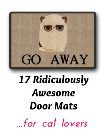 Cat Doormats by Cat Enter Here 17 Ridiculously Awesome Cat