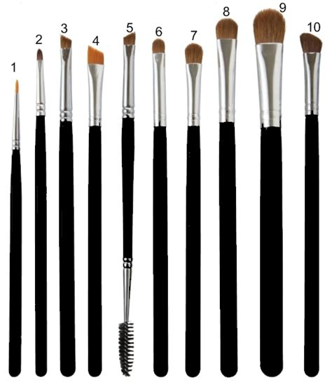 Eye Makeup Brush eyeshadow brushes 101 what they are for how they are used