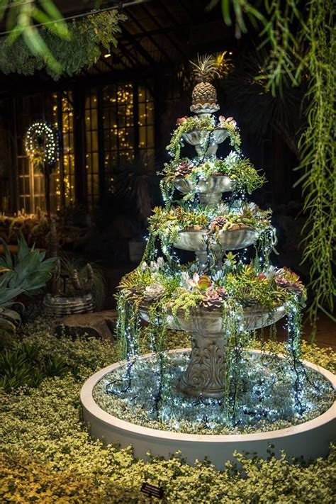 silver garden  glowing  succulents  holiday