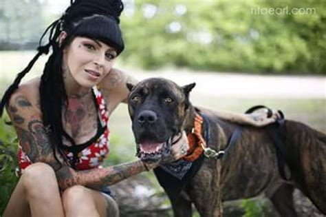pitbulls and parolees dogs pit bulls and parolees is officially renewed for season 9 to air in 2017