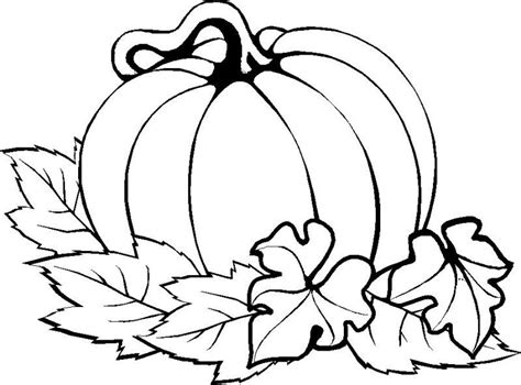 basic turkey coloring page pumpkin easy thanksgiving coloring pages printables
